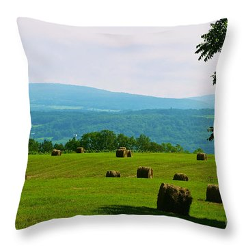 Hay Bails Throw Pillow by William Norton