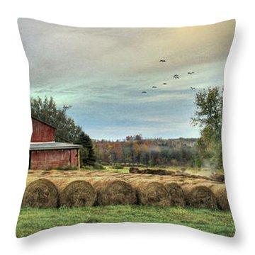 Hay Bales Throw Pillow by Lori Deiter