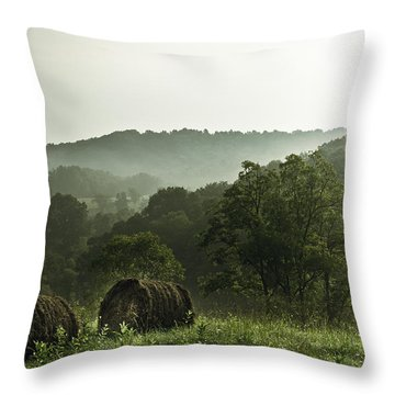 Hay Bales Throw Pillow by Shane Holsclaw