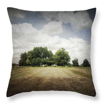 Haying At Angustown Throw Pillow by Cynthia Lassiter