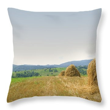 Hayrack Panorama Throw Pillow