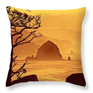 Throw Pillow featuring the photograph Haystack Burnt Sienna by Wendy McKennon