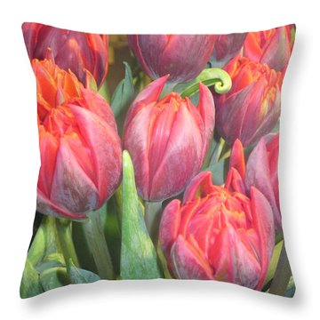Hazardous Beauty Throw Pillow