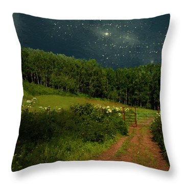 Hazy Moon Meadow Throw Pillow by RC deWinter
