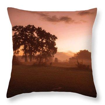 Hazy Morn Throw Pillow