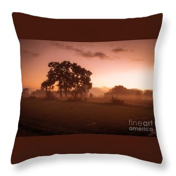 Hazy Morn Throw Pillow