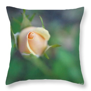 Throw Pillow featuring the photograph Hazy Rosebud Squared by TK Goforth