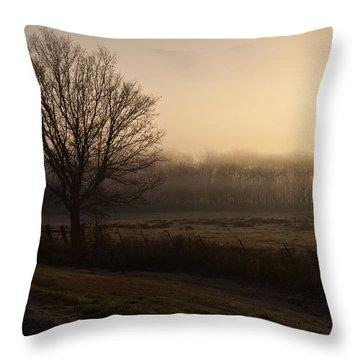 Hazy Sunrise Throw Pillow