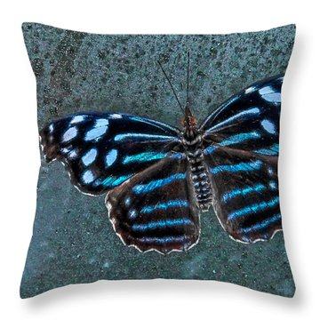 Hdr Butterfly Throw Pillow