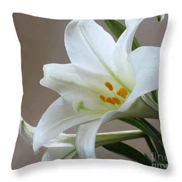 Throw Pillow featuring the photograph He Is Risen by Anita Oakley
