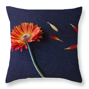 He Loves Me He Loves Me Not He Loves Me Throw Pillow