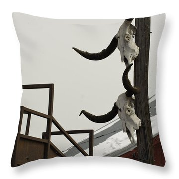 Throw Pillow featuring the photograph Head Em Up N Move Em Out by Daniel Hebard