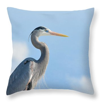 Head In The Clouds Throw Pillow by Fraida Gutovich