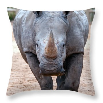Head On Throw Pillow by Tim Stanley