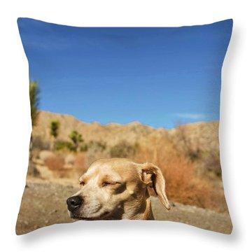 Headache Throw Pillow by Angela J Wright