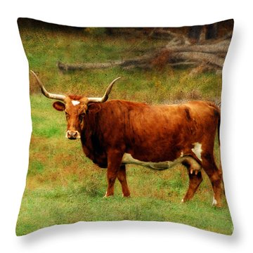 Heading For The Barn Throw Pillow by Lois Bryan