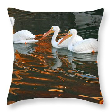Throw Pillow featuring the photograph Heading Home by Roger Rockefeller