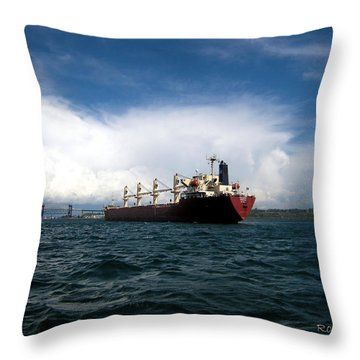 Throw Pillow featuring the photograph Heading Home by Ron Haist