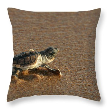 Heading Out To Sea Throw Pillow