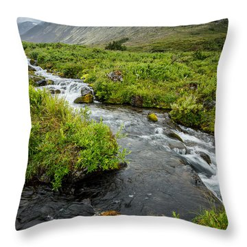 Headwaters In Summer Throw Pillow