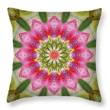 Throw Pillow featuring the photograph Healing Mandala 25 by Bell And Todd