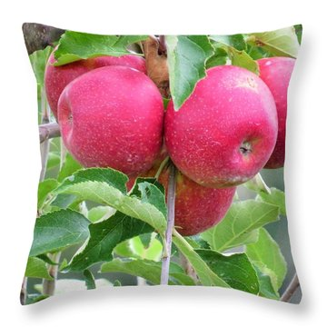 Healthy Food Throw Pillow