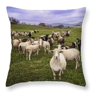 Throw Pillow featuring the photograph Hear My Voise by Jaki Miller