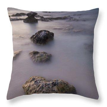 Heart Of Stone Throw Pillow by Adam Romanowicz