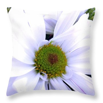 Heart Of The Daisy Throw Pillow