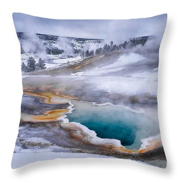 Heart Spring Throw Pillow by Priscilla Burgers