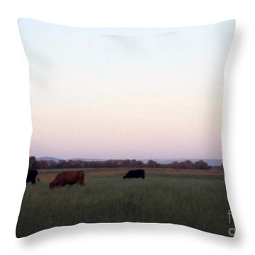 Throw Pillow featuring the photograph The Kittitas Valley I by Susan Parish