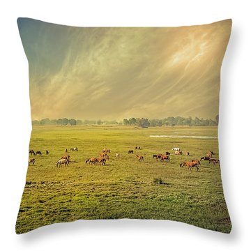 Heat N Dust - Indian Countryside Throw Pillow