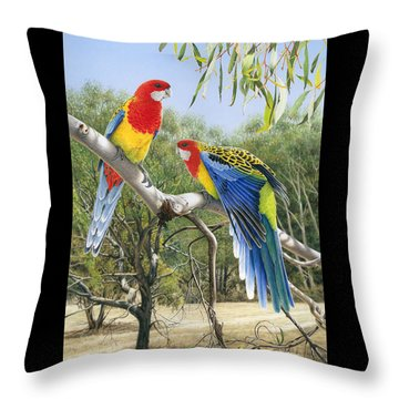 Heatwave - Eastern Rosellas Throw Pillow by Frances McMahon