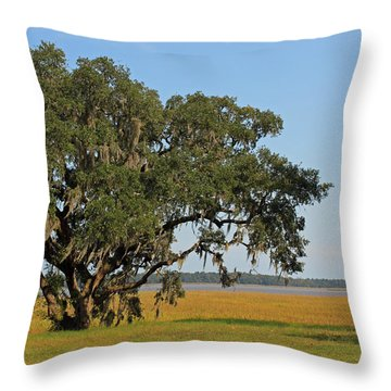 Heaven Is A Beautiful Place Throw Pillow