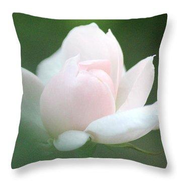 Throw Pillow featuring the photograph Heaven Sent by The Art Of Marilyn Ridoutt-Greene
