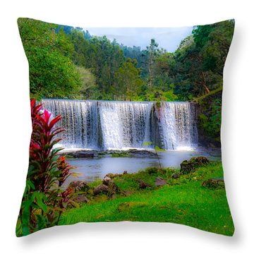 Heaven In The Woods Throw Pillow