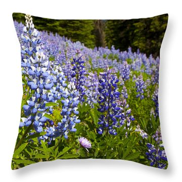 Heavenly Blue Lupins Throw Pillow by Theresa Tahara