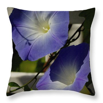 Throw Pillow featuring the photograph Heavenly Blue Morning Glory by James C Thomas