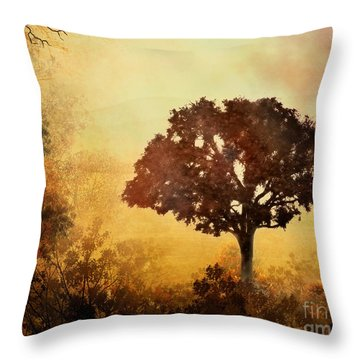 Heavenly Dawn Throw Pillow by Peter Awax