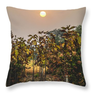 Heavenly Sunset Throw Pillow by Utkarsh Solanki