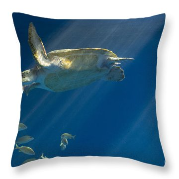 Heavenly Turtle Throw Pillow