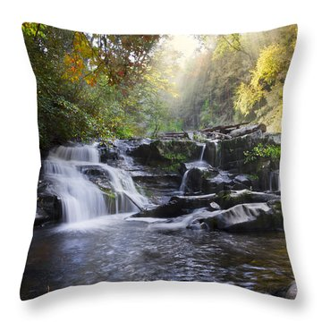 Heaven's Light Throw Pillow by Debra and Dave Vanderlaan