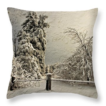 Heavy Laden Blizzard Throw Pillow by Lois Bryan