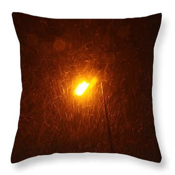 Throw Pillow featuring the photograph Heavy Snows By Lamplight by Jean Walker