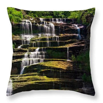 Throw Pillow featuring the photograph Hector Falls by Dave Files