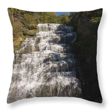 Throw Pillow featuring the photograph Hector Falls by William Norton