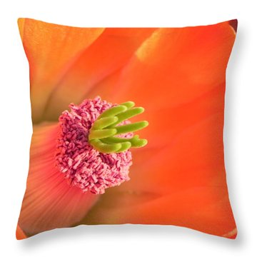 Throw Pillow featuring the photograph Hedgehog Cactus Flower by Deb Halloran