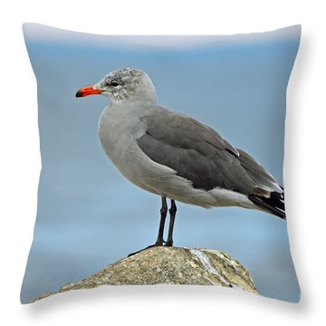 Throw Pillow featuring the photograph Heermann's Gull In Profile by Susan Wiedmann