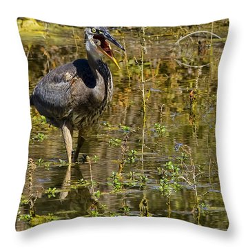 Throw Pillow featuring the photograph Heimlich Please by Gary Holmes