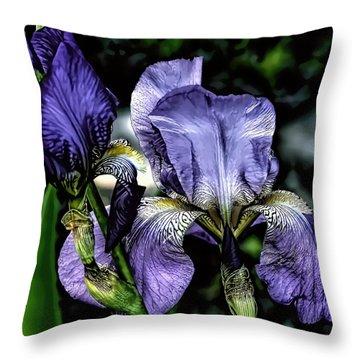 Heirloom Purple Iris Blooms Throw Pillow